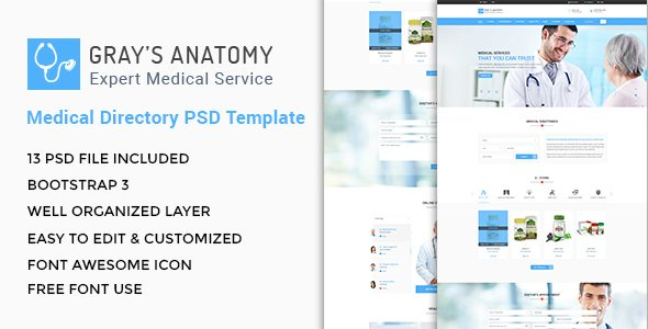 Gray's Anatomy - Medical Directory PSD Template