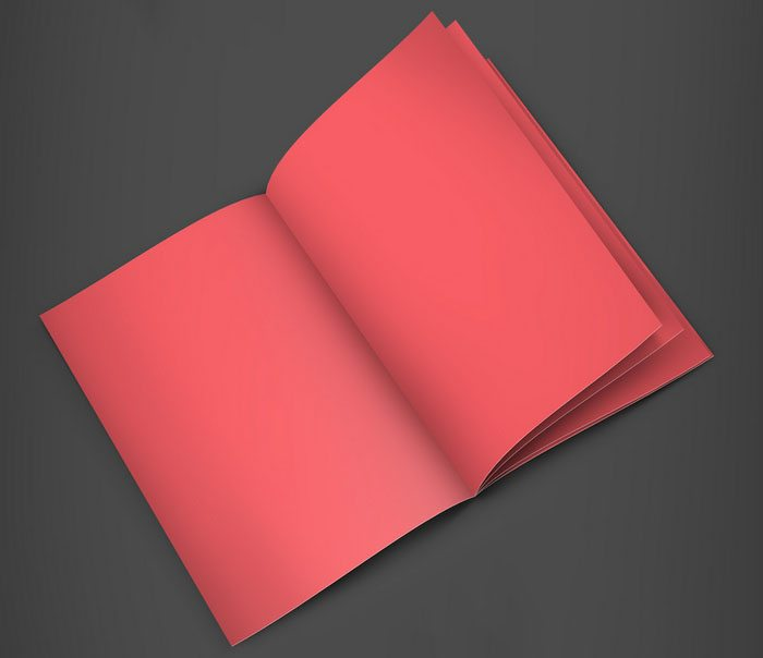 Free A4 Booklet Mockup psd