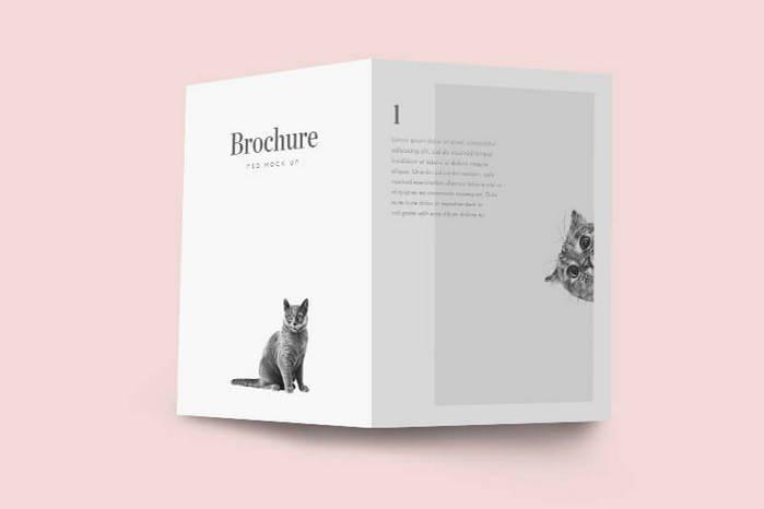 bi-brochure-mockup psd