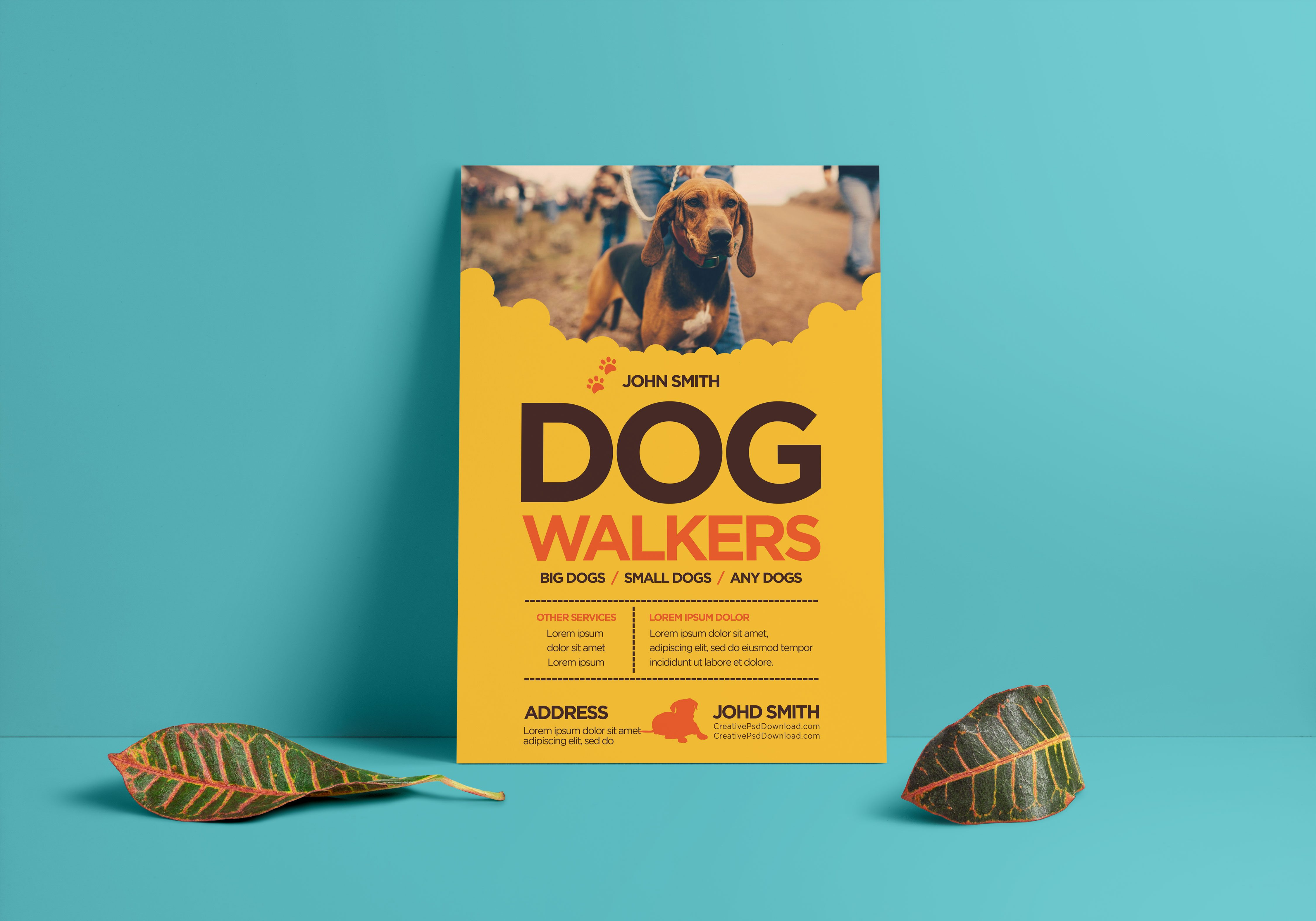 Creative Dog Walkers Flyer Showcase 1